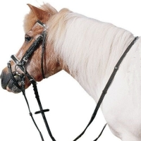 Shetlander Hoofdstellen & Pony Hoofdstellen