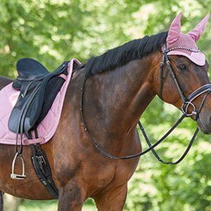 Aanbiedingen voor pony en paard